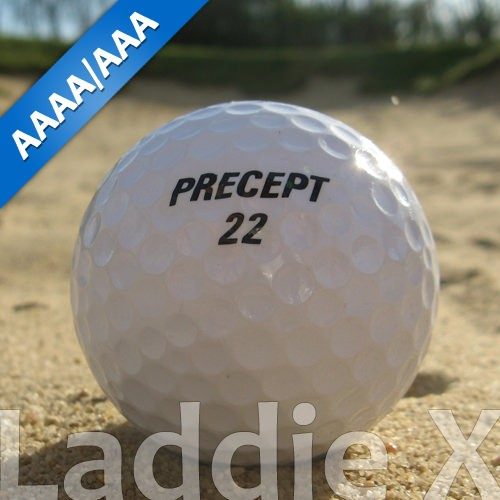 Precept MC Lady Lakeballs