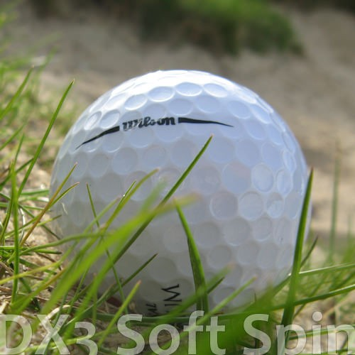 Wilson DX3 Mix Lakeballs